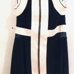 Zara Mini Wool/Cashmere Blend Sweater Dress NW